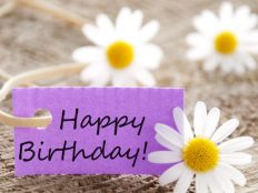 Chamomile and Birthday greeting