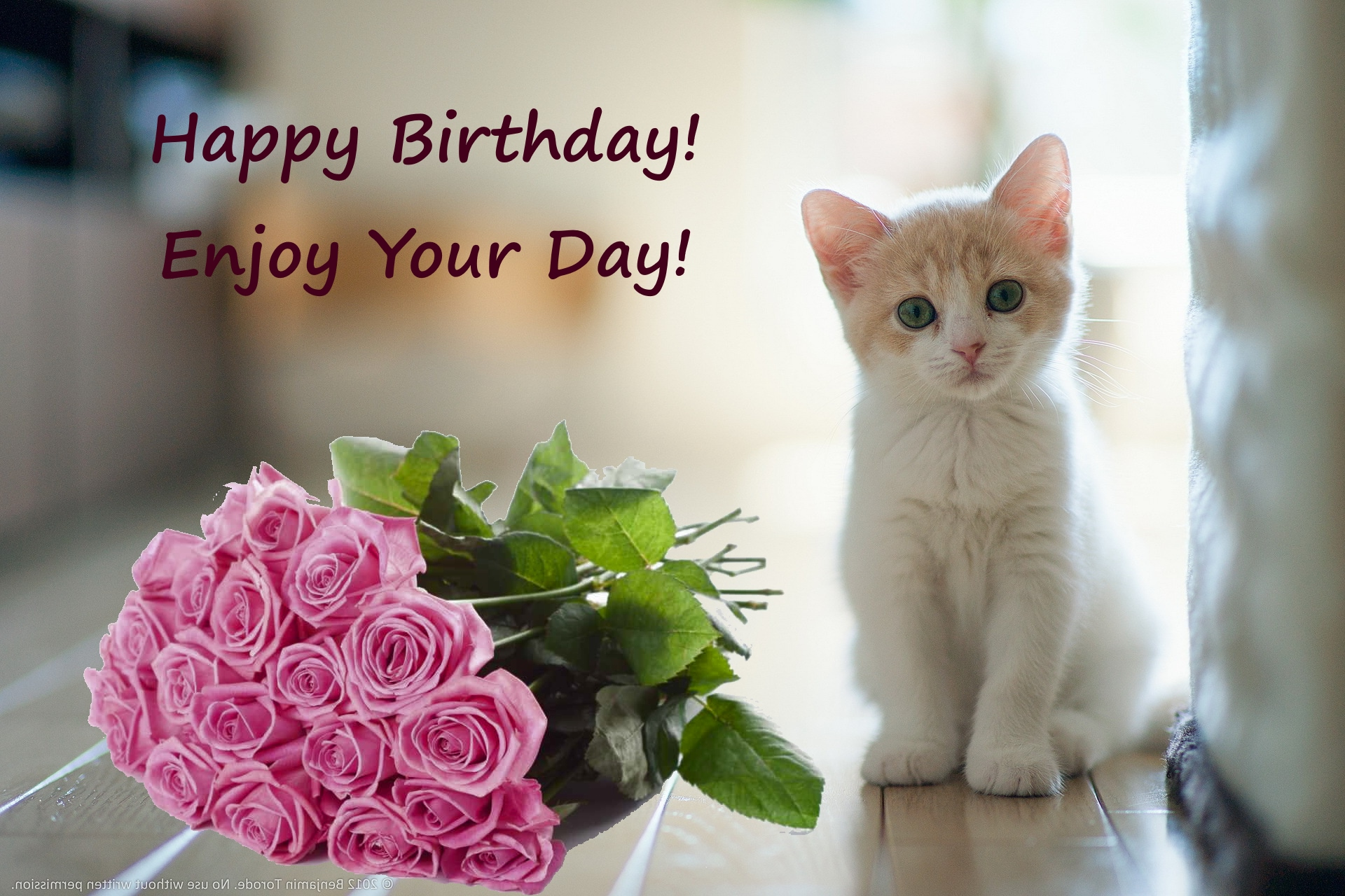 Happy birthday with kitten and flowers pink red roses happy happy birthday with kitten and flowers pink red roses izmirmasajfo Image collections