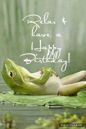 Happy birthday from a merry frog 2