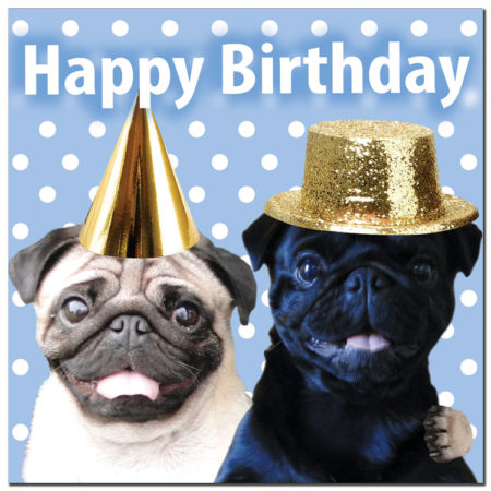 Happy birthday, funny pug 5