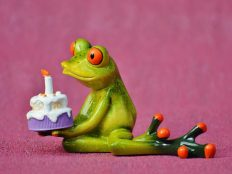 Happy birthday from colorful frogs