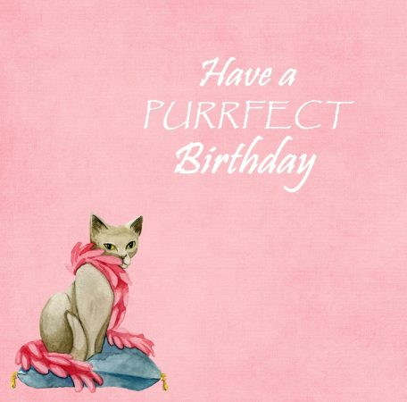 Happy birthday, Cat birthday card